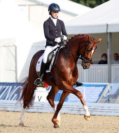 Lord Carnaby ridden by Beatrice Buchwald. © Ken Braddick/dressage-news.com