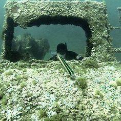 Chasse sous marine corse avec Yannat06