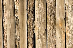 wooden fence of vertical planks