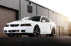 2000 Ford Mustang GT - Bad Karma Photo & Image Gallery