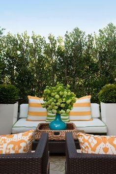 Such a calming outdoor space by @emilyruddo!
