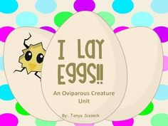 This science unit is designed for younger elementary students. It is a great introduction to oviparous creatures. This resource will help students identify creatures that lay eggs and those that do not.