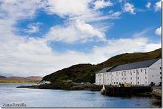 Distillery hopping in Islay