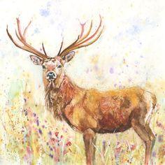 Fine Art Print of HUMMINGBIRD original watercolour by HELEN APRIL ROSE   499