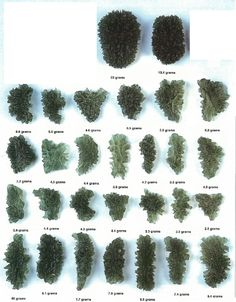 Moldavite Natural Pieces