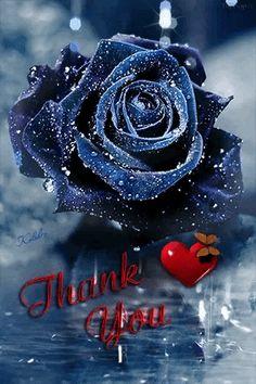 cehenot - My Desktop Nexus Thank You Images, Thank You Quotes, Flower Images, Flower Art, Thanks Gif, Danse Salsa, Roses Gif, Beau Gif, Sweet Romantic Quotes
