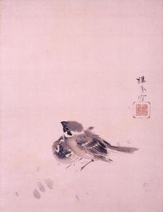 Seiho Takeuchi