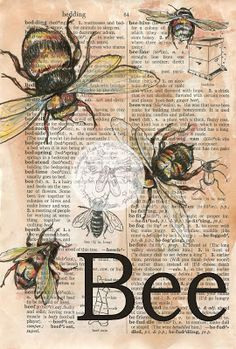 Bee Mixed Media Drawing on Distressed, Dictionary Page - available for purchase at www.etsy.com/shop/flyingshoes - flying shoes art studio