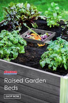 New England Arbors Urbana Composting Keyhole Garden Bed Vegetable Garden Design, Diy Garden, Garden Landscape Design, Garden Projects, Kitchen Garden Ideas, Vegetable Gardening, Garden Art, Gardening For Beginners, Gardening Tips