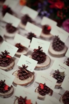 Pinecones and log slices as placement cards what a wonderful idea. It could also be part of a favor.