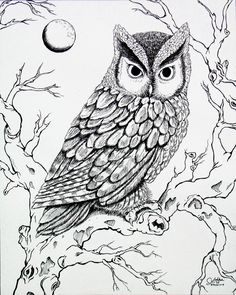 Free Screech Owl Coloring Page Birds Pinterest Owl Coloring