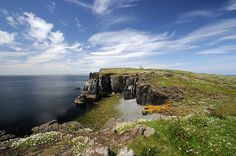 fife scotland | ... day on the Isle of May, Fife, Scotland | Flickr - Photo Sharing