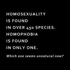 Homosexuality vs. Homophobia