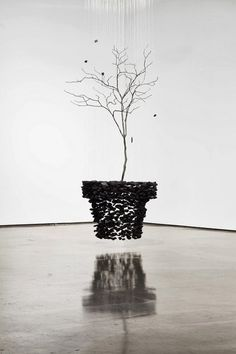installations by seon ghi bahk