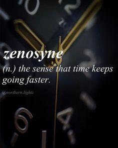 Zenosyne-