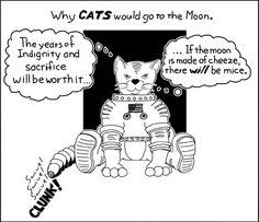 Cats to the moon (Swordboriher Comics)