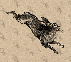jumping rabbit iron on pillow Hare Illustration, Rabbit Tattoos, Digital Backdrops, Digital Collage, Rabbit Art, Gravure, Mail Art, Vintage Images, Art Inspo