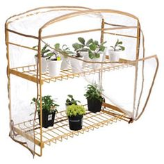 Classroom Greenhouse with Cover