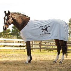 SmartPak Varsity Horse Sweatshirt.  Yeah, I just bought my horse a sweatshirt.  Disturbing how happy I am about that.  When I start knitting him outfits, please shoot me. He isn't even athletic. At.All.