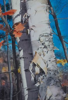 Paper Birch size - 17.5in x 12in - price $1250
