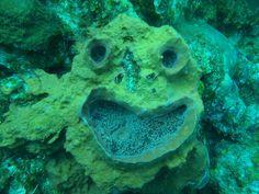 underwater face
