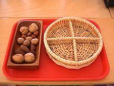 Nut sorting