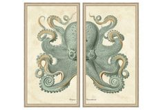 Teal Octopus Diptych