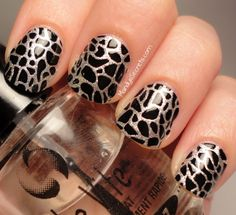 Kiss Nail Dress Stickers!1 Just got these in my Holiday VoxBox! So easy put on!!