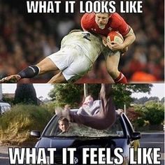 Rugby world rankings Rugby Memes, Rugby Quotes, Rugby League, Rugby Players, Rugby Wallpaper, South Africa Rugby, Swimming Memes, International Rugby, Welsh Rugby