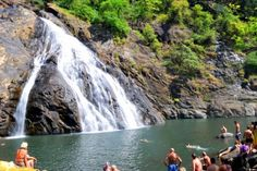 waterfall in goa
