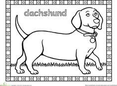 Kindergarten Animals Worksheets: Dachshund Coloring Page