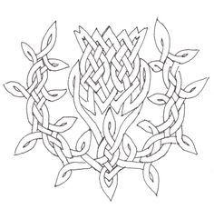 Celtic Thistle Knot Work | celtic knotwork knotwork thistle ink carolyn