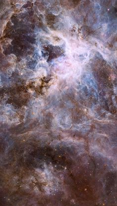 """levantineviper: """"A section of the Tarantula Nebula in the constellation Dorado Image credit: NASA/ESA Hubble Space Telescope """" Space Artwork, Wallpaper Space, Galaxy Wallpaper, Wallpaper Backgrounds, Hubble Space Telescope, Space And Astronomy, Hubble Images, Galaxy Art, To Infinity And Beyond"""