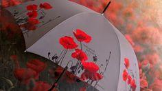 Poppy Umbrella by H.DUE.O