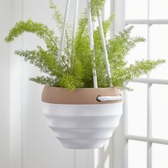 Shop White Planter with Rope Hanger. A crafty twist on hanging planters, our handcrafted set suspends a ribbed white earthenware with contrasting clay rim from white ropes. Due to its handcrafted nature, planters will vary in glazing effects. Diy Planters Outdoor, White Planters, Hanging Planters, Garden Planters, Outdoor Gardens, Planter Pots, Outdoor Plants, Indoor Garden, Indoor Outdoor