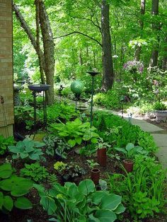 Shade Garden Wth Structures