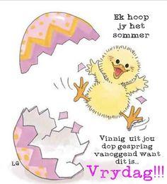 Lekker Dag, Goeie Nag, Goeie More, Friday Humor, Afrikaans, Happy Friday, Qoutes, Positivity, Van