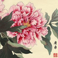 These are the sort of peonies in my garden where the crab spider hides Asian Flowers, Oriental Flowers, Japanese Flowers, Japanese Peony Tattoo, Japanese Prints, Japanese Art, Art Floral, Peony Illustration, Poster Mural