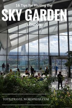 Top 16 Tips for Visiting the Sky Garden in London