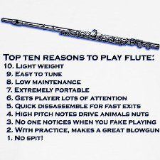 Top 10 Reasons to Play the Flute  #10 is a lie, but still, not as much as a trombone!
