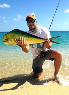 Catching up: Some gr Catching up: Some great fishing in Southern Baja Surf Fishing, Deep Sea Fishing, Gone Fishing, Fishing Reels, Fishing Tips, Fishing Lures, Saltwater Flies, Saltwater Fishing, Fishing Accessories