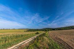 #hungary#travel #summer #ikozosseg #mik #instadaily #photooftheday #rural #nature #turista #magyarorszag #kéktúra #fields #road #sky