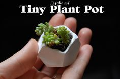 DIY Adorable pots at home! Bake in oven, save a ton on cute planters.