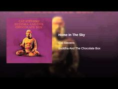 Home In The Sky Cat Stevens, Island Records, Universal Music Group, High School Girls, Ghost Towns, Mom And Dad, Cat Lovers, Music Videos, Musicals