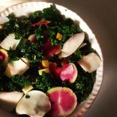 Lacinata kale salad with watermelons radish, black Spanish radish, and belle de boskoop apples