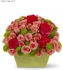 Flowers to Mumbai