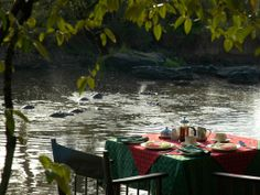 Lodges in Maasai Mara; Mara Serena Safari Lodge Hippo Pool Breakfast by the mara river #Maasaimara http://www.trevarontours.com/index.php/blog/item/154-mara-serena-safari-lodge.html#.Uy_vTc4gtkg