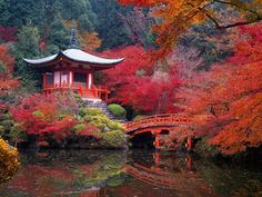 "Fall in Kyoto, Japan. Kyoto was Japan's long-time capital, and is known especially for its temples and beautiful autumns. In fact, Kyoto means ""capital city,"" and it kept its name even after the government was moved to Tokyo in Kyoto Japan, Japan Japan, Japan Trip, Japan Sakura, Okinawa Japan, Places To Travel, Places To See, Travel Destinations, Places Around The World"
