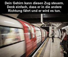 WELCHE RICHTUNG? - SCHWARZER-KAFFEE