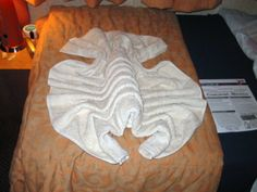 Towel+Animal | Meg took this Carnival towel animal photo on the Carnival Conquest.